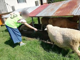 畜産技術振興センターと布施公園🎵