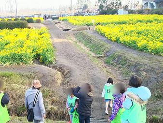 黄色の大地を歩こう🌼