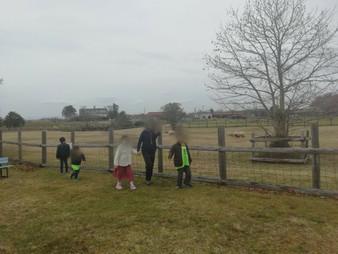 畜産技術振興センター、みさき公園