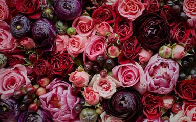 flowers-florist.jpg