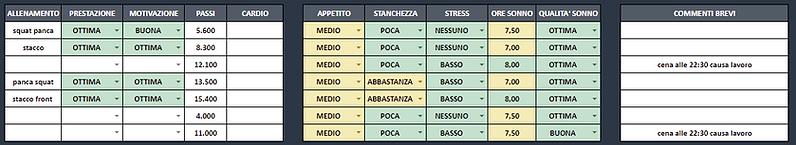 DIARIO ITA - DATI OPZIONALI.png