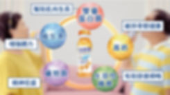 蛋白質 高鈣 纖維 綜合維他命