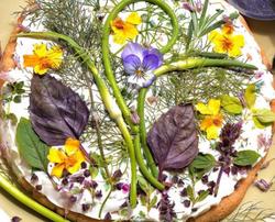 Gilberties herb pizza