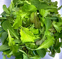 Gilberties-Lettuce Mix.png