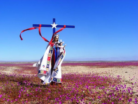 Virgen del Carmen: materiales para clases y la catequesis