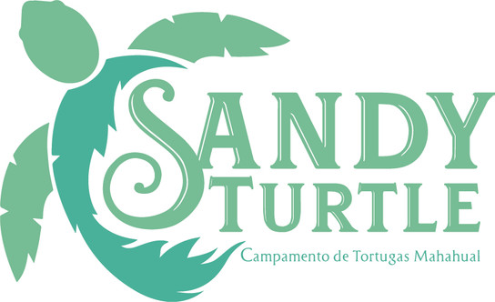 SabdyTurtle_Logo_Final.jpg
