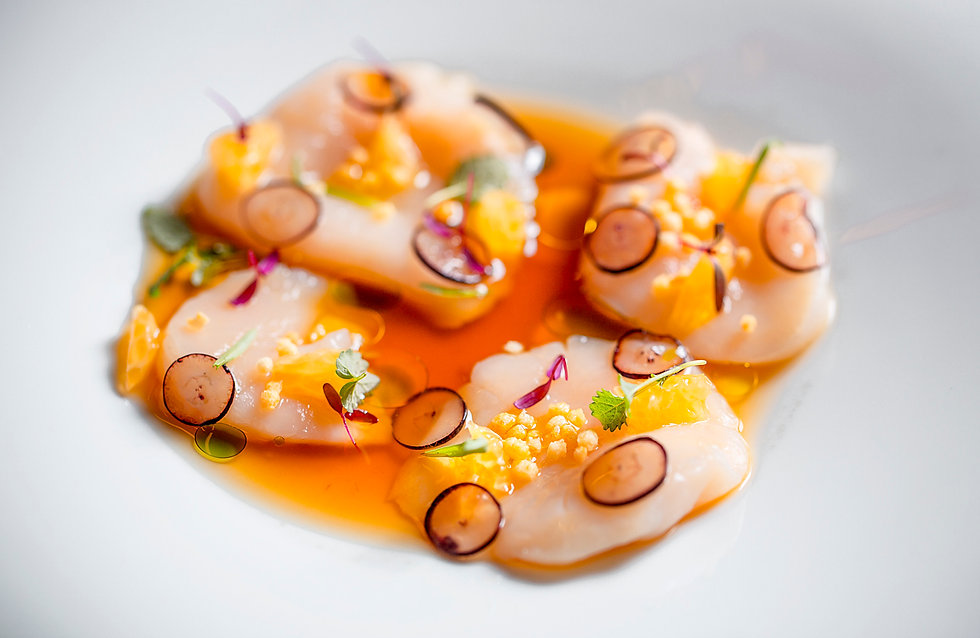 севиче из морского гребешка1.jpg