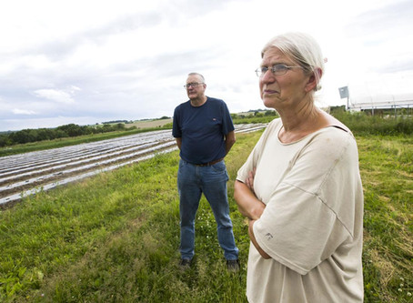 POST-BULLETIN: Pioneering Organic Produce Farm Facing Foreclosure