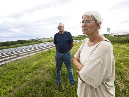 POST-BULLETIN: Pioneering Organic Produce Farm Facing Foreclosure