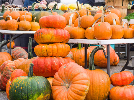 507 Magazine: Pumpkin spice, trick-or-treating, and more from the last outdoor markets