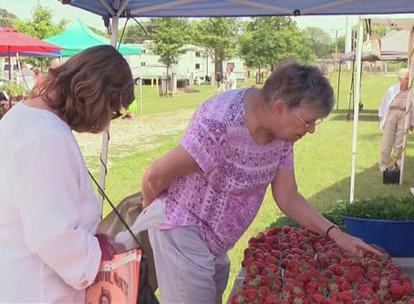 KAAL: Some Households Could Lose SNAP Benefits