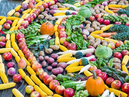 ALFOMBRA - Farmers Market Contributes to Community Art