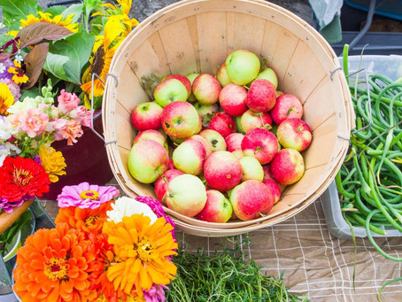 507 Magazine: What's New at the Farmers Market?