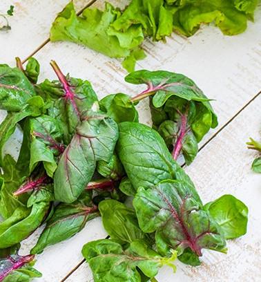 Benike spinach.jpg
