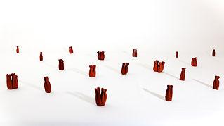 Andi-Kacziba-Exsuccus-2014-installation.