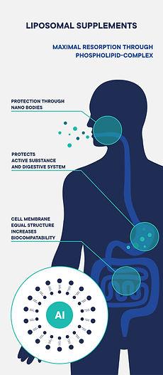 200914_Digestion_Infografik_06-06.jpg
