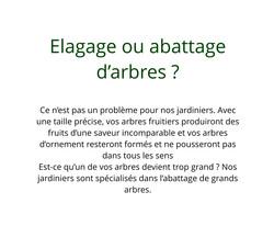 Elagage_ou_abattage_d'arbres