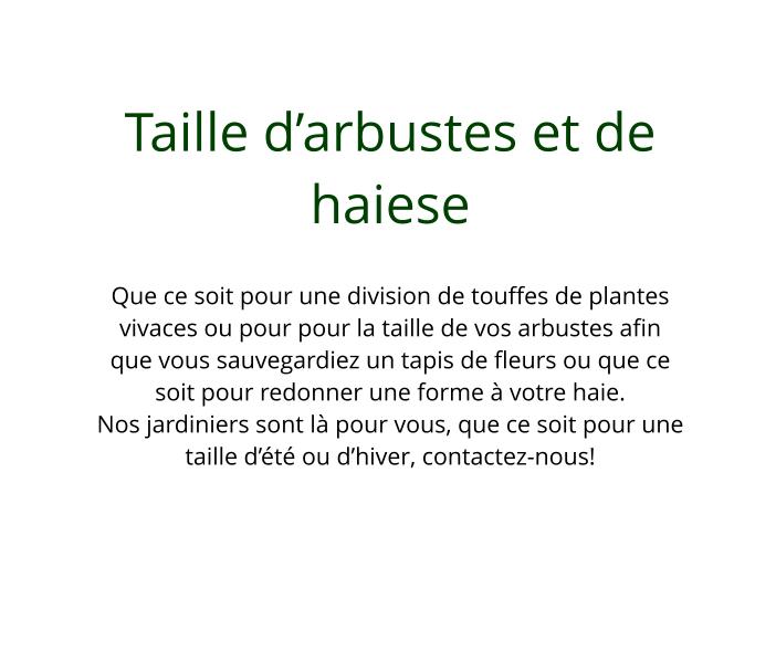 Taille_d'arbustes_et_de_haies
