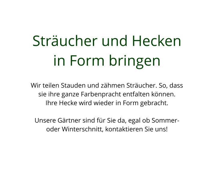 Sträucher & Hecken Gartenbau