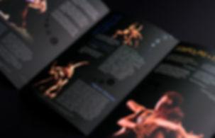 Flyer-Cisne-Negro-3.jpg