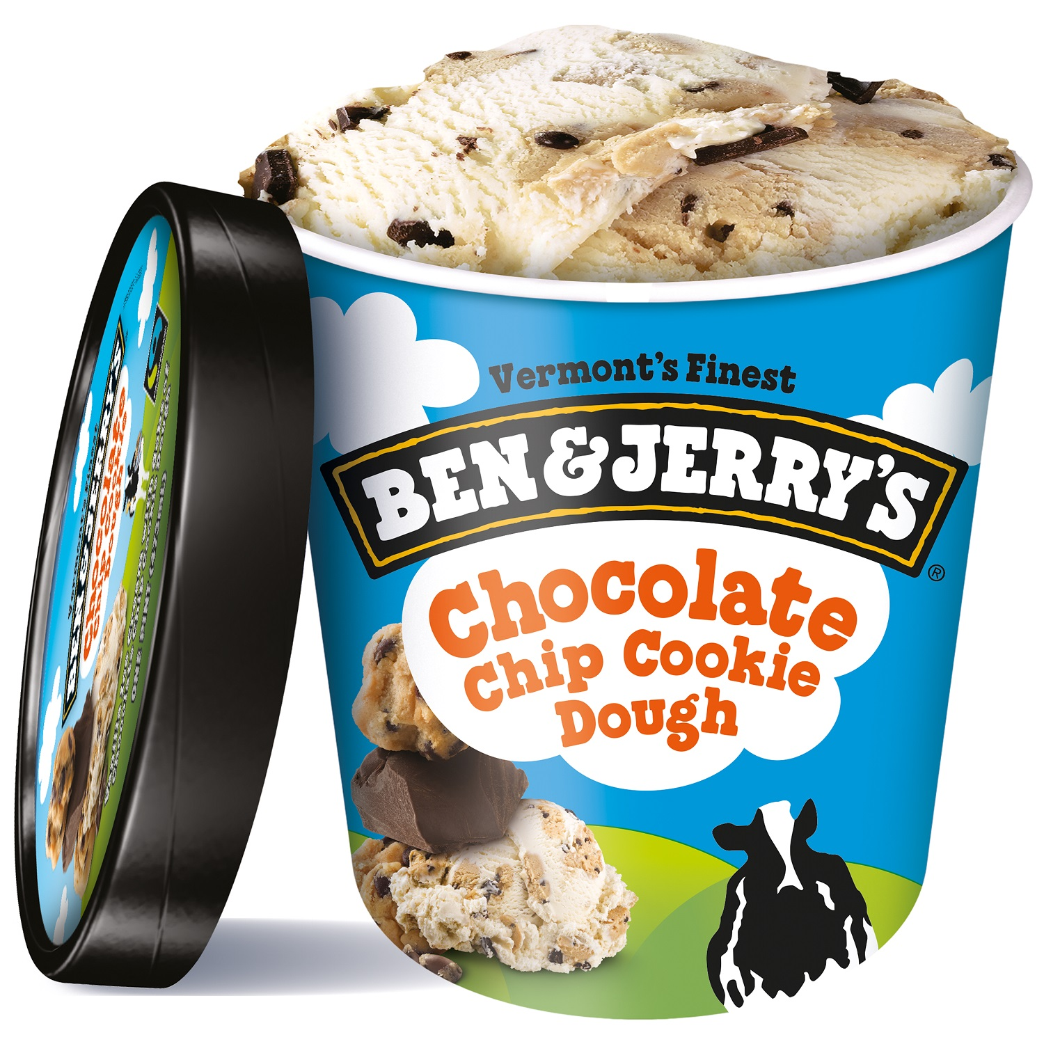 Ben & Jerry's Chocolate Chip Cookie Doug