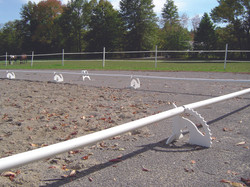 white stanchions