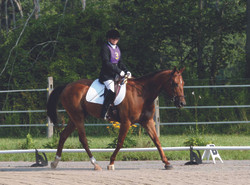 dressage show with ring