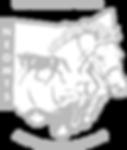 NEOMTS logo-gray.png