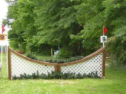 lattice curve