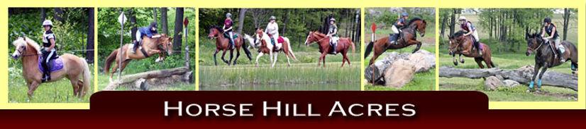 header-horsehill.jpg
