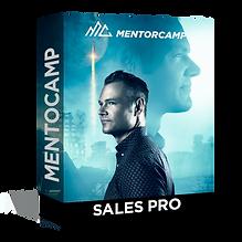 Sales Pro Box.png