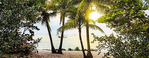 BahamaIsland.jpg