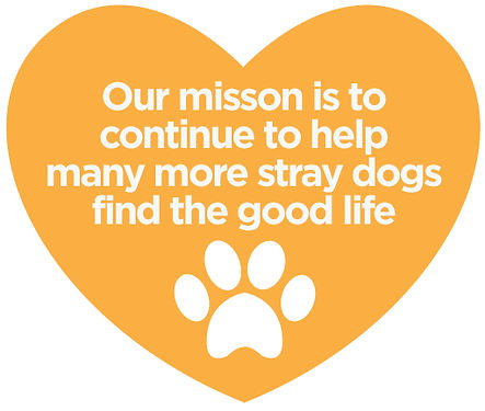 We help stray dogs find the good life