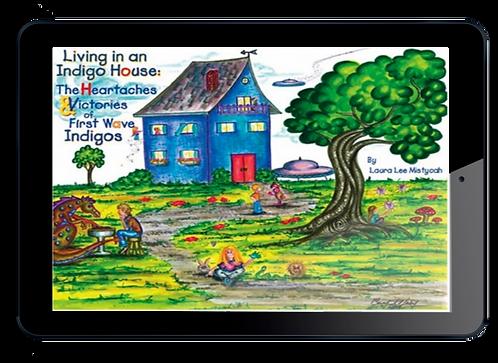 Living In An Indigo House E-Book