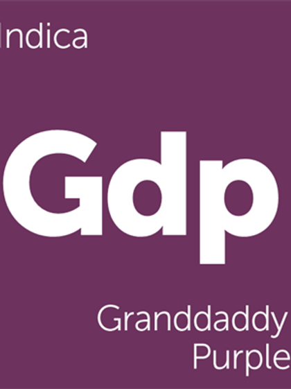 Grandaddy Purps