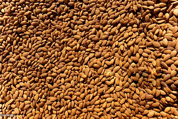 almonds-backgrounds.png