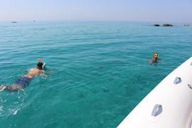 Nuotando con i pesci