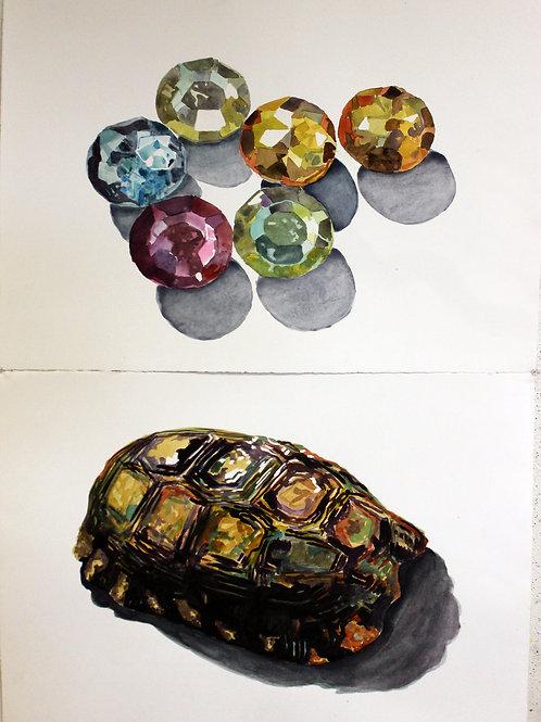 Turtle/Jewel