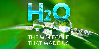 The molecule that made us - series photo