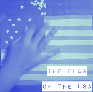 The Flag of the USA