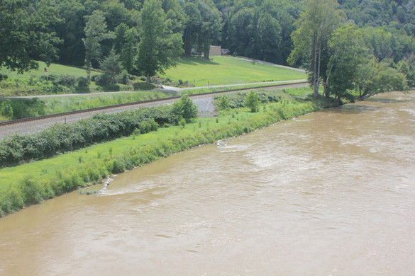 French Broad River (7).JPG