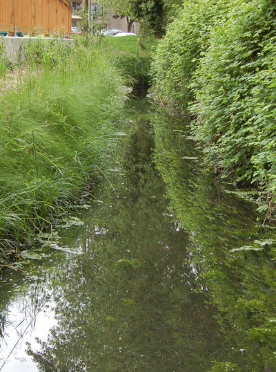 Vegetated Stormwater Channel.jpg