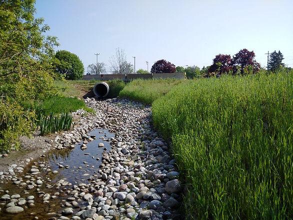 Sophia Creek.jpg