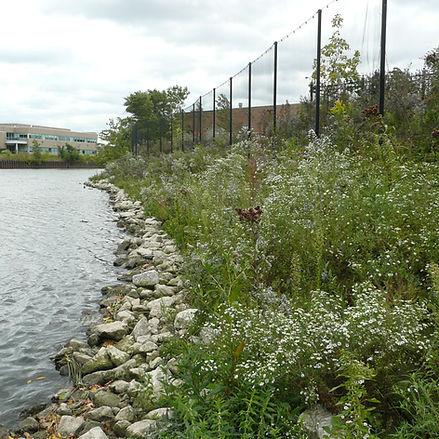 Chicago River.jpg