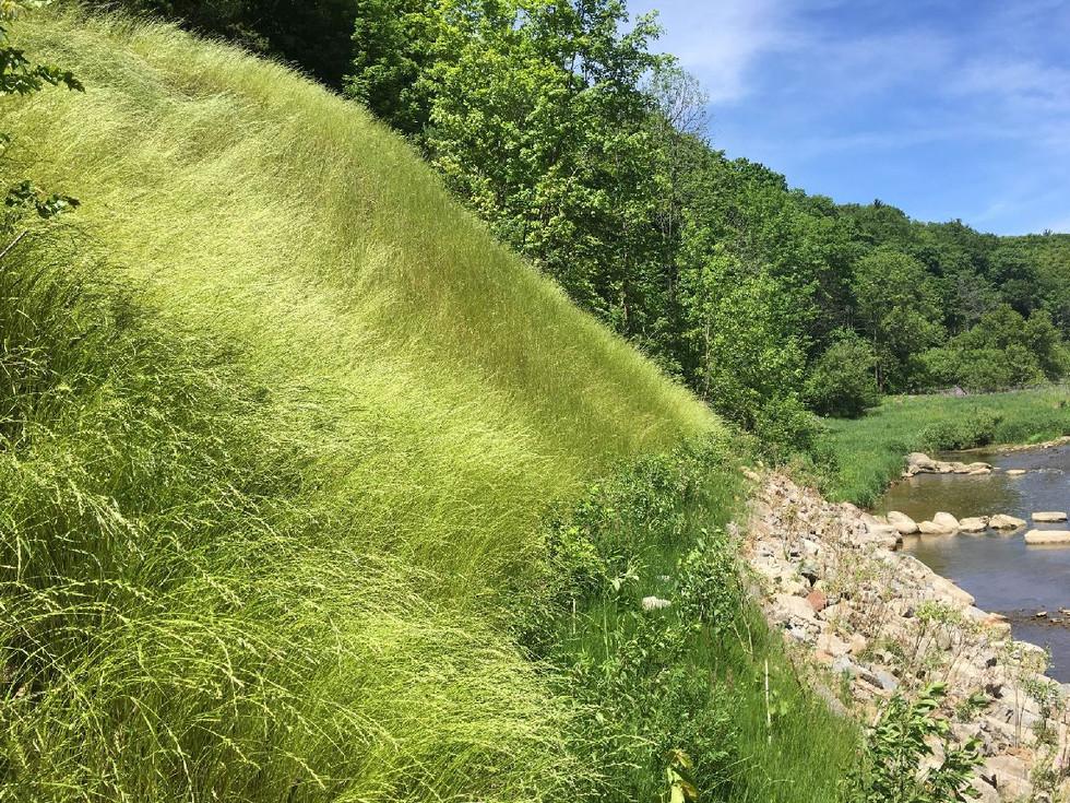 Glenorchy Trail (5).JPG