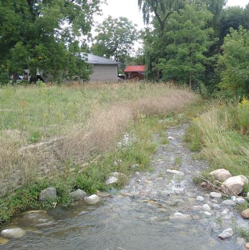 Sophia Creek (5).jpg