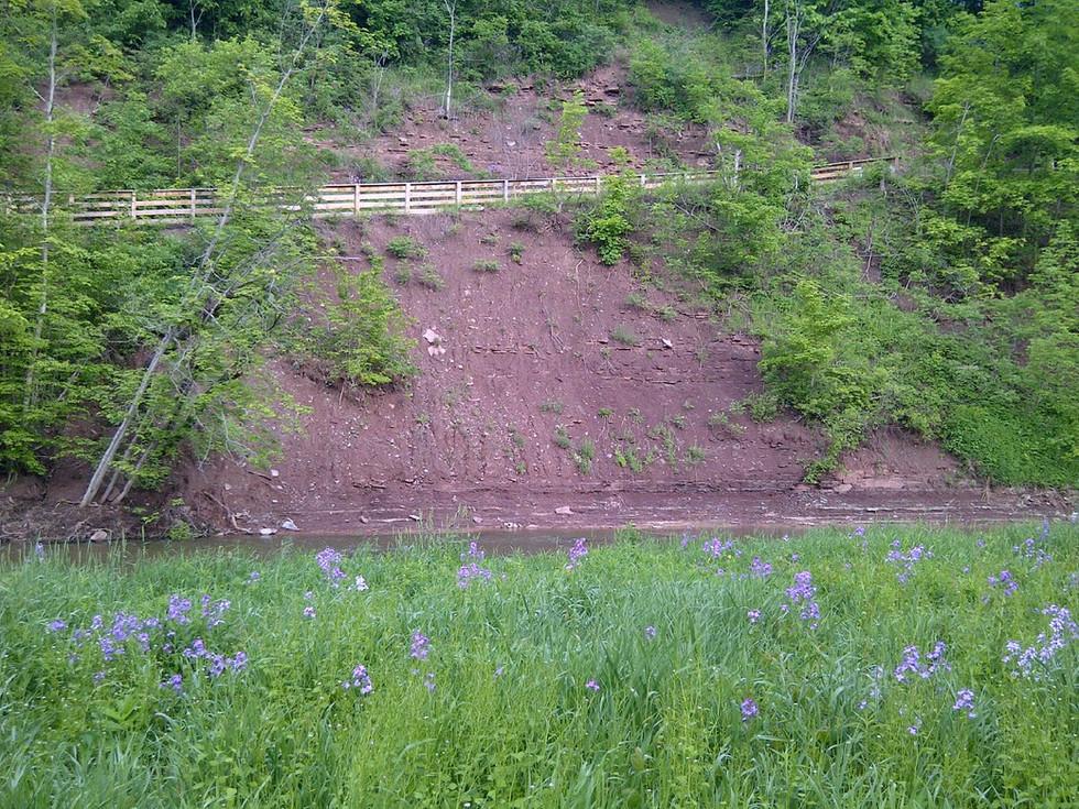 Glenorchy Trail (1).jpg