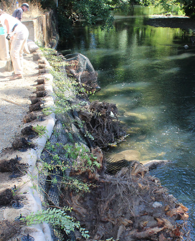 Streambank Restoration Installation.jpg
