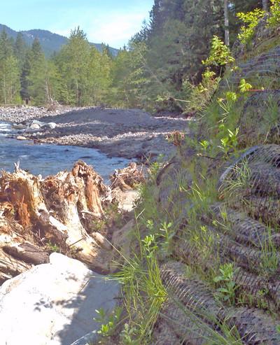 Sandy River.jpg