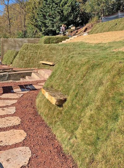 Vegetated Slope.jpg